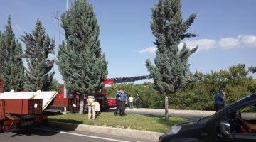 Boynu Ağaç Dalına Sıkışan Şahıs Öldü