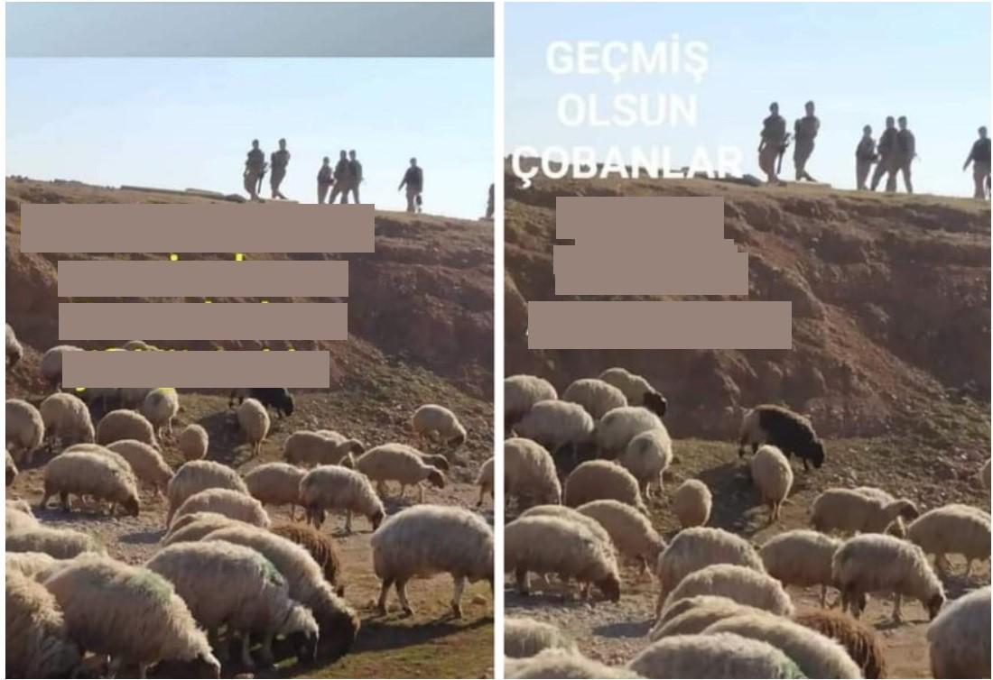 Meclis'te Koyunlara Gözaltı Tartışması