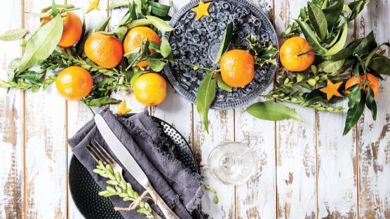 C vitamini ruha da iyi geliyor-Prof.Dr. Aysun Bay Karabulut yazdı